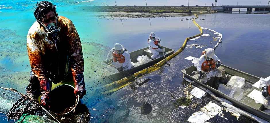 oil spill off the California coast destroying wildlife