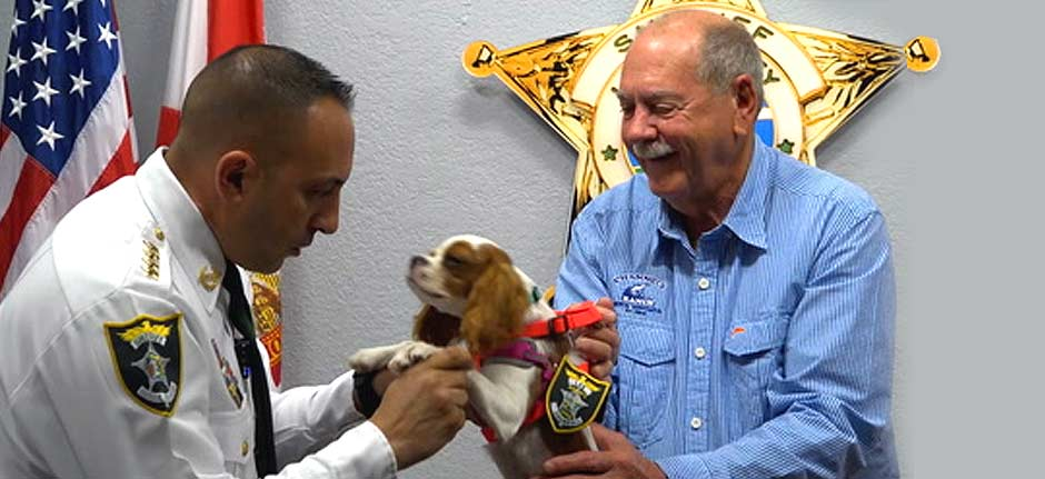 'Gunner the puppy' honoured as 'deputy dog' by local sheriff